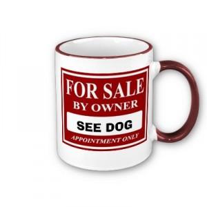 Dog Owner For Sale