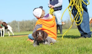 pointer puppies with kids